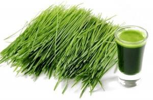zielony-jeczmien-opinie